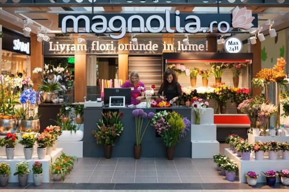 floraria-magnolia